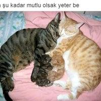 Photo taken at İmranlı by Şeyma T. on 9/17/2016