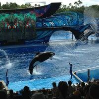 Photo taken at SeaWorld Orlando by Degreef K. on 7/18/2013