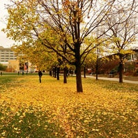 Photo taken at York University - Keele Campus by Felipe S. on 11/6/2012