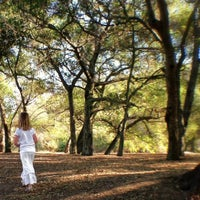 Photo taken at Irvine Regional Park by Kathleen E. on 11/24/2012
