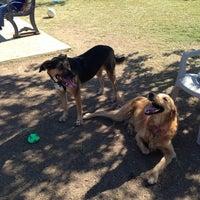 Photo taken at Echo Mountain Dog Park by Tiffany B. on 10/13/2013
