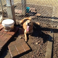 Photo taken at Echo Mountain Dog Park by Tiffany B. on 1/12/2014