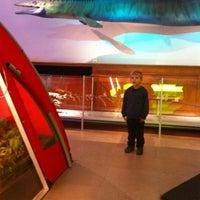 De wereld van kina het huis sint pieters 4 tips from 1018 visitors - Huis van de wereld bank plaatsen ...