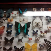 Photo taken at The Butterfly Conservatory at the American Museum of Natural History by Amanda W. on 10/19/2012