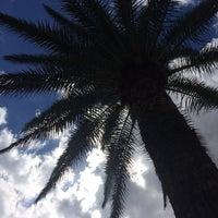 Photo taken at Sahara Playa Hotel Las Palmas by Valleria M. on 9/26/2014