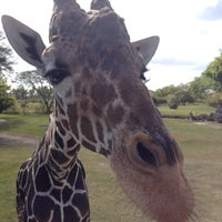 Photo taken at Zoo Miami by Danya R. on 12/24/2012