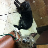Photo taken at Craig Road Animal Hospital by Cathy B. on 8/9/2013