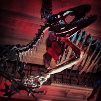 Photo taken at Australian Museum by Nelson L. on 1/2/2013