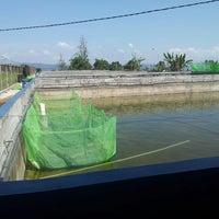 Photo taken at Balai Besar Pengembangan Budidaya Air Tawar (BBPBAT) by Demin B. on 6/25/2013