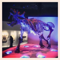 Photo taken at Houston Museum of Natural Science by Stephen W. on 4/6/2013