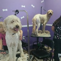 Photo taken at The Purple Pooch Bakery Boutique Groomer by Lenora S. on 2/18/2015