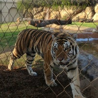 Photo taken at LSU - Mike's Habitat by Corinne P. on 10/17/2012