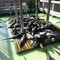 Photo taken at Gatorland by Etienne B. on 1/5/2013