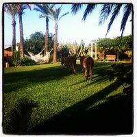 Photo taken at Agroturismo SantBlai by @Marta_Bonet on 11/17/2011
