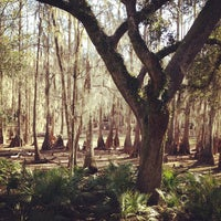 Photo taken at Tallahassee Museum by Alicia L. on 1/28/2012