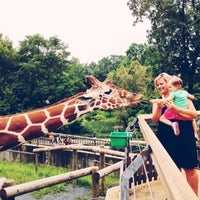 Photo taken at Maryland Zoo in Baltimore by Josh F. on 9/2/2012