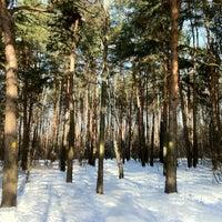 Photo taken at Природно-исторический парк «Кузьминки-Люблино» by Alexander M. on 2/17/2013