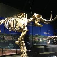Photo taken at Tellus Science Museum by Juan M. on 1/5/2013
