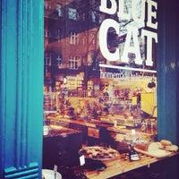 Photo taken at Katie's Blue Cat by Pamela C. on 11/28/2013