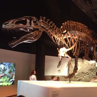 Photo taken at Houston Museum of Natural Science by Chris on 5/24/2013