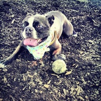 Photo taken at Columbia Dog Park by Aaron N. on 8/7/2013
