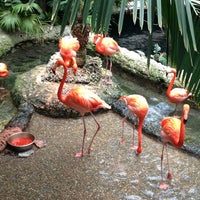 Photo taken at Dallas World Aquarium by KRod on 6/8/2013