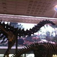 Photo taken at Peabody Museum of Natural History by BNA Bridge M. on 5/20/2013