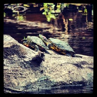 Photo taken at Jean Lafitte National Historical Park by Fernando C. on 6/22/2013