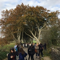 Photo taken at The Dark Hedges by Barbaros on 10/30/2016