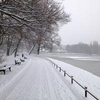 Photo taken at Kleinhesseloher See by Simon W. on 1/17/2013