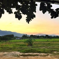 Photo taken at ปลาชานเมือง by Nut H. on 10/22/2015