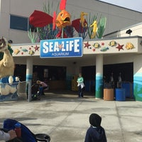 Photo taken at SEA LIFE Aquarium by Regene S. on 12/20/2014