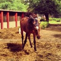 Photo taken at Delhi Riding Club by Hiroshi O. on 4/14/2013