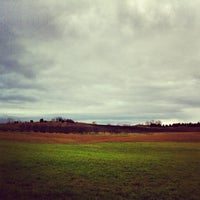 Photo taken at Black Star Farms Winery by Jason G. on 11/3/2012