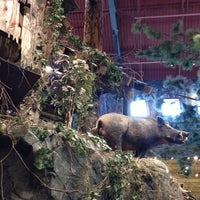 Photo taken at Bass Pro Shops by Aimee H. on 10/6/2013