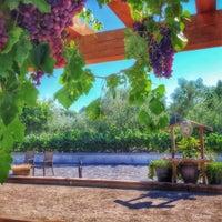 Photo taken at Ceja Vineyards by Peter S. on 8/6/2015