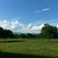 Photo taken at Parco archeologico urbano dell'antica Picentia by Satoboy C. on 6/7/2013