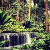 Photo taken at Singapore Botanic Gardens by Martina M. on 2/11/2013