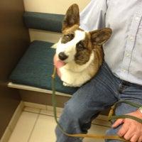Photo taken at Deer Creek Animal Hospital by Causen E. on 10/26/2012