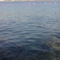 Photo taken at Torba Plajı by Hacı Y. on 6/26/2013