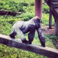 Photo taken at Little Rock Zoo by Scott M. on 5/18/2013