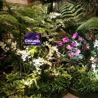 Photo taken at Changi Airport Terminal 2 by Alf H. on 3/20/2013