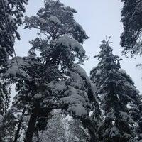 Photo taken at Keskuspuisto by Pauliina P. on 2/18/2013