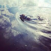 Photo taken at Место, где поют соловьи, а в небе бездна звезд by Virta on 9/6/2014