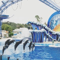 Photo taken at SeaWorld Orlando by Catherine E. on 11/20/2012