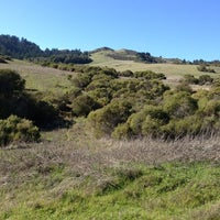 Photo taken at Windy Hill Open Space Preserve by Au on 1/26/2013