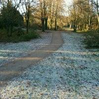 Charlton Lakes Dog Walk