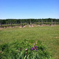 Photo taken at Silver Leaf Vineyard and Winery by Joseph on 6/19/2013