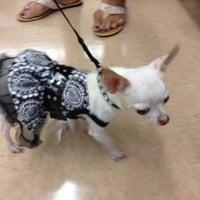 Photo taken at Petco by Jennifer C. on 10/20/2012