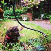 Photo taken at Baan Habeebee Resort by David P. on 1/6/2015